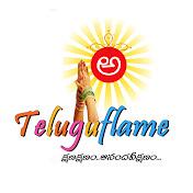 TeluguFlame net worth