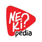 Nekipedia net worth