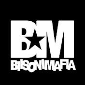 Biisonimafia net worth