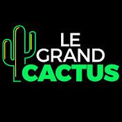 Le Grand Cactus - RTBF net worth