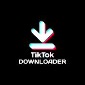 TikTok Downloader