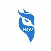 SAV net worth