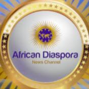African Diaspora News Channel net worth