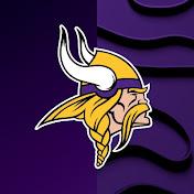 Minnesota Vikings net worth