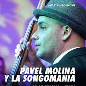 Pavel Molina & La SongoManìa net worth