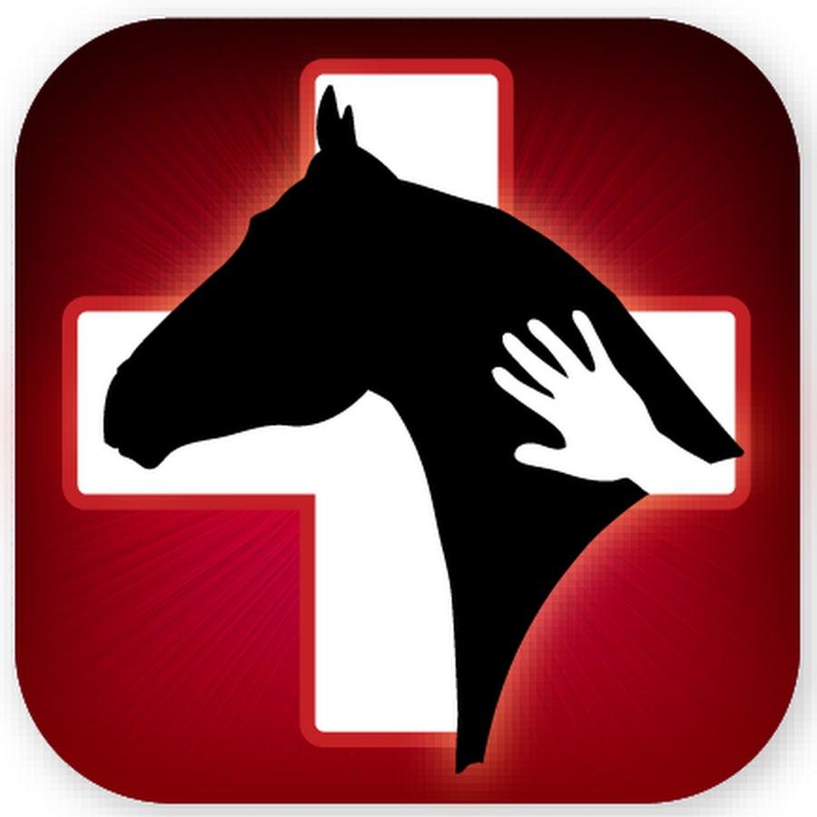 Horse Side Vet Guide -