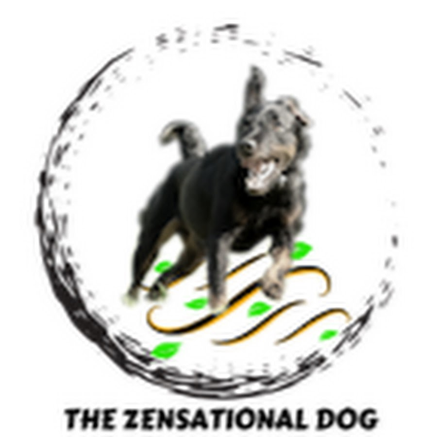 The Zensational Dog