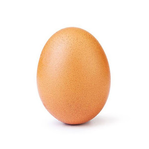 The Daily Egg