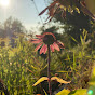 Blüte Nandini