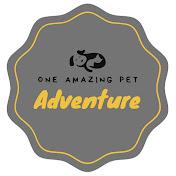 One Amazing Pet