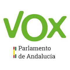 VOX Parlamento de Andalucía