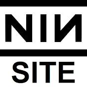 NINsite net worth