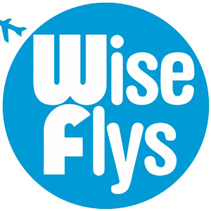 Wise Flys