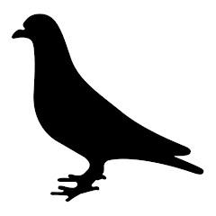 Pigeon Squad