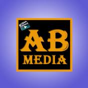 AB Media Vrindavan net worth
