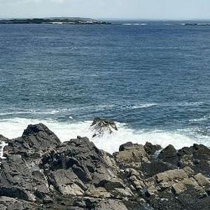 mr. reat gaming