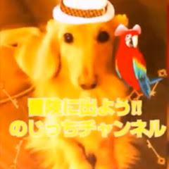 のじっちTV / アニメ and 漫画