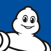 Michelin net worth
