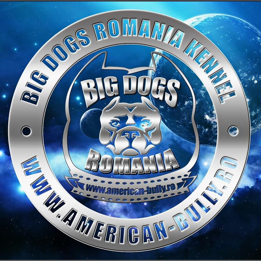 bigdogs romania