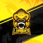 LuPower net worth