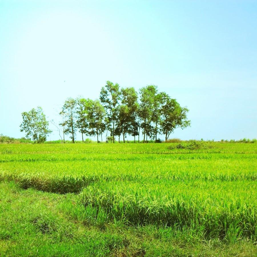 Nguyễn Trường Long