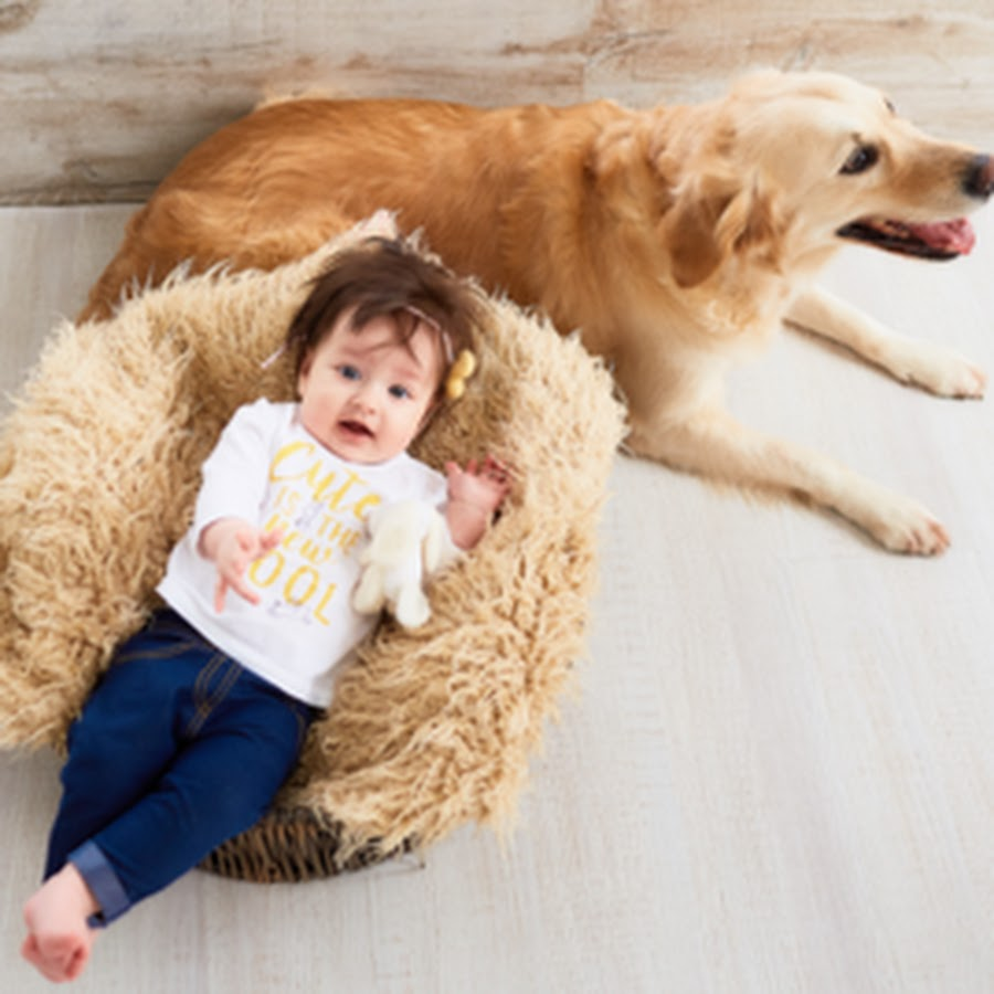 Cute Babies and Pets TV