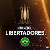 CONMEBOL Libertadores Income