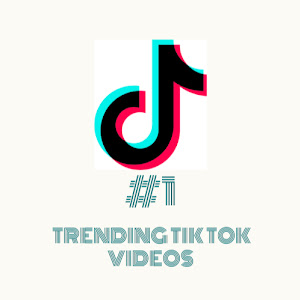 Best TikTok Compilations #1