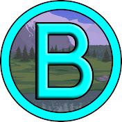 BironGaming net worth