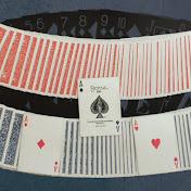 A Million Card Tricks net worth