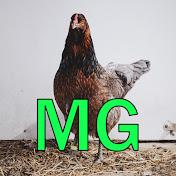 Modest Gamer net worth