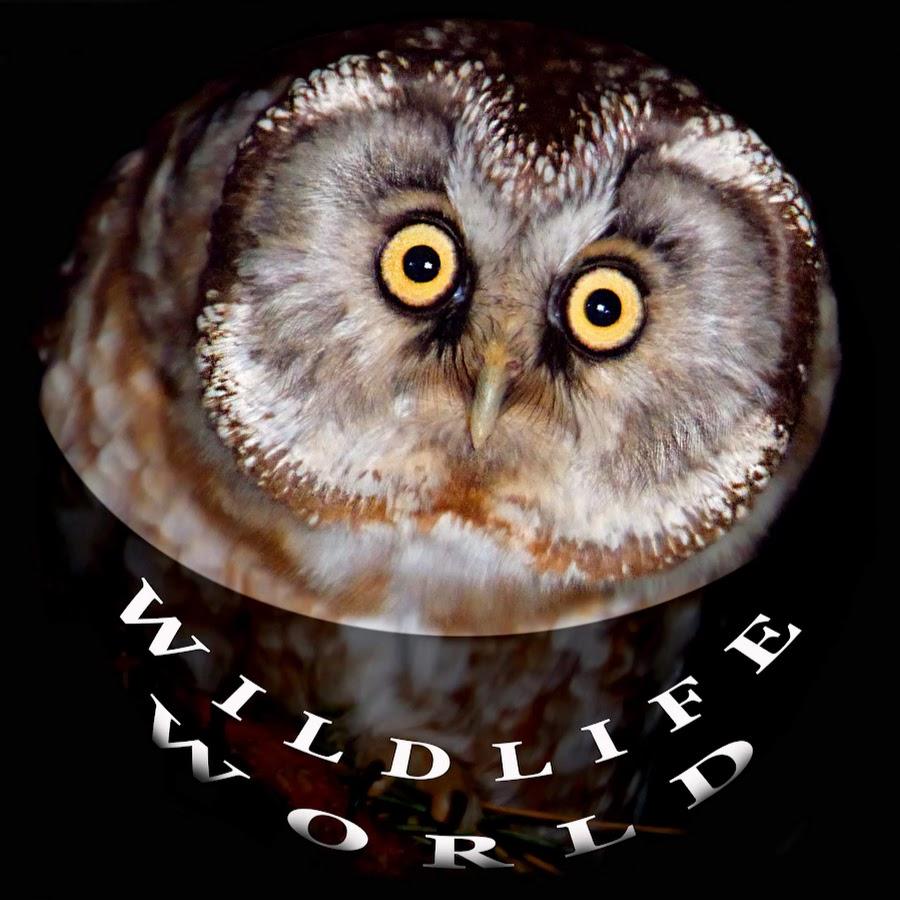 Wildlife World