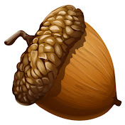 Nutty History net worth