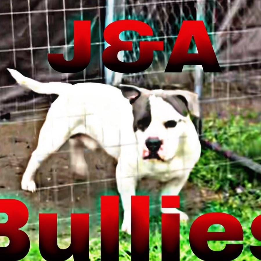 J&A Bullies
