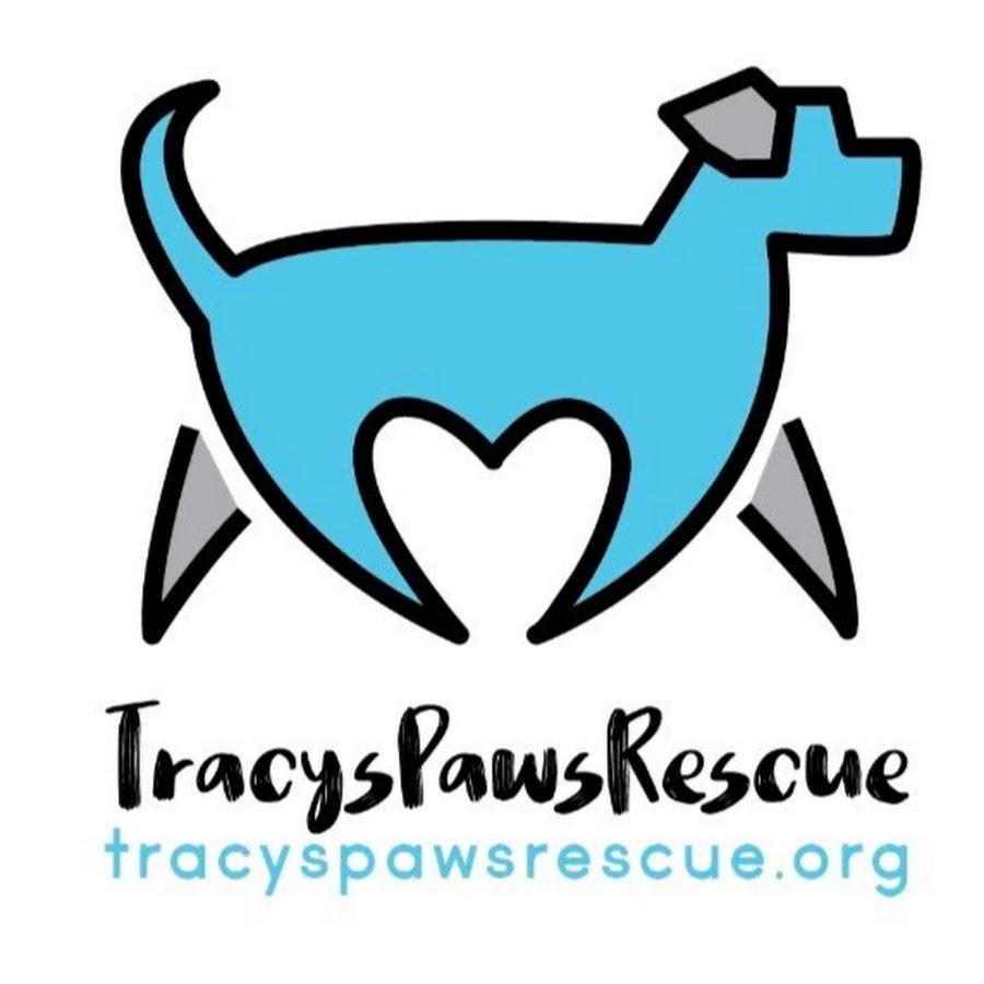 TracysDogs
