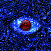 Big Brother Albania - Top Channel net worth