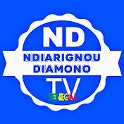 Ndiarignou Diamono TV Sénégal net worth