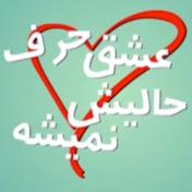Eshgh Harf Halish Nemishe عشق حرف حالیش نمیشه net worth