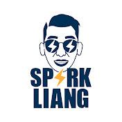 Spark Liang 张开亮 net worth