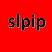 slpip net worth