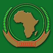 AMISOM Somalia net worth