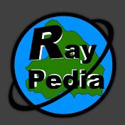 Raypedia Nation net worth