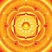 Your Energy Focus net worth