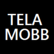 Tela Mobb net worth