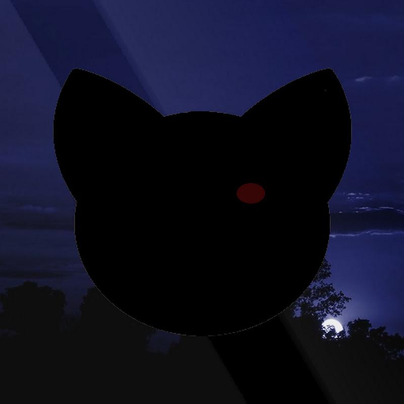 PhantomCat (phantomcat)
