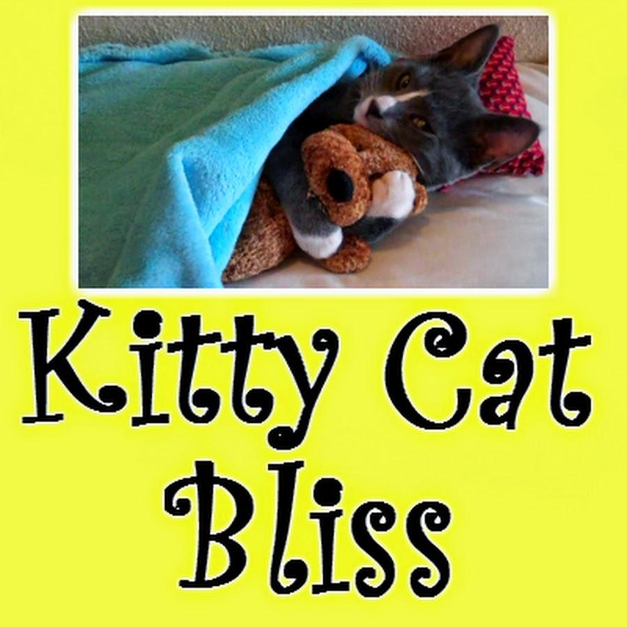 Kitty Cat Bliss