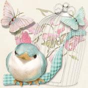 HappyBird's Glitter Nest net worth
