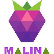 Petru Malina net worth