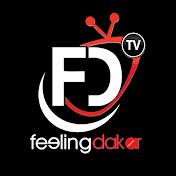 Feeling Dakar TV net worth