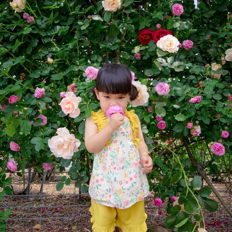 tin bóng đá